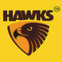Hawks Paints & Coatings Pvt Ltd