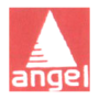 Angel Security & Intelligence Services